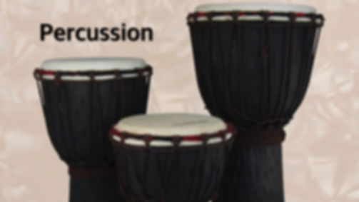 MUSICIANS 1ST CHOICE PERCUSSION