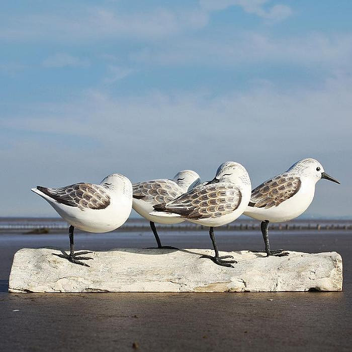 Coastal gifts and seaside accessories wooden sanderling
