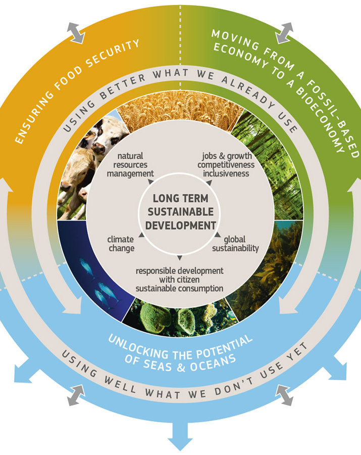 bioeconomy, energy, renewable, agriculture, consumer goods
