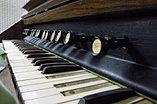Antique Organ 2
