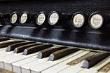 Antique Organ  1