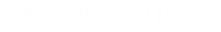 Anticlone_Gallery_logo_white.png