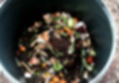 Composting kitchen scraps, compost service Madison Wi