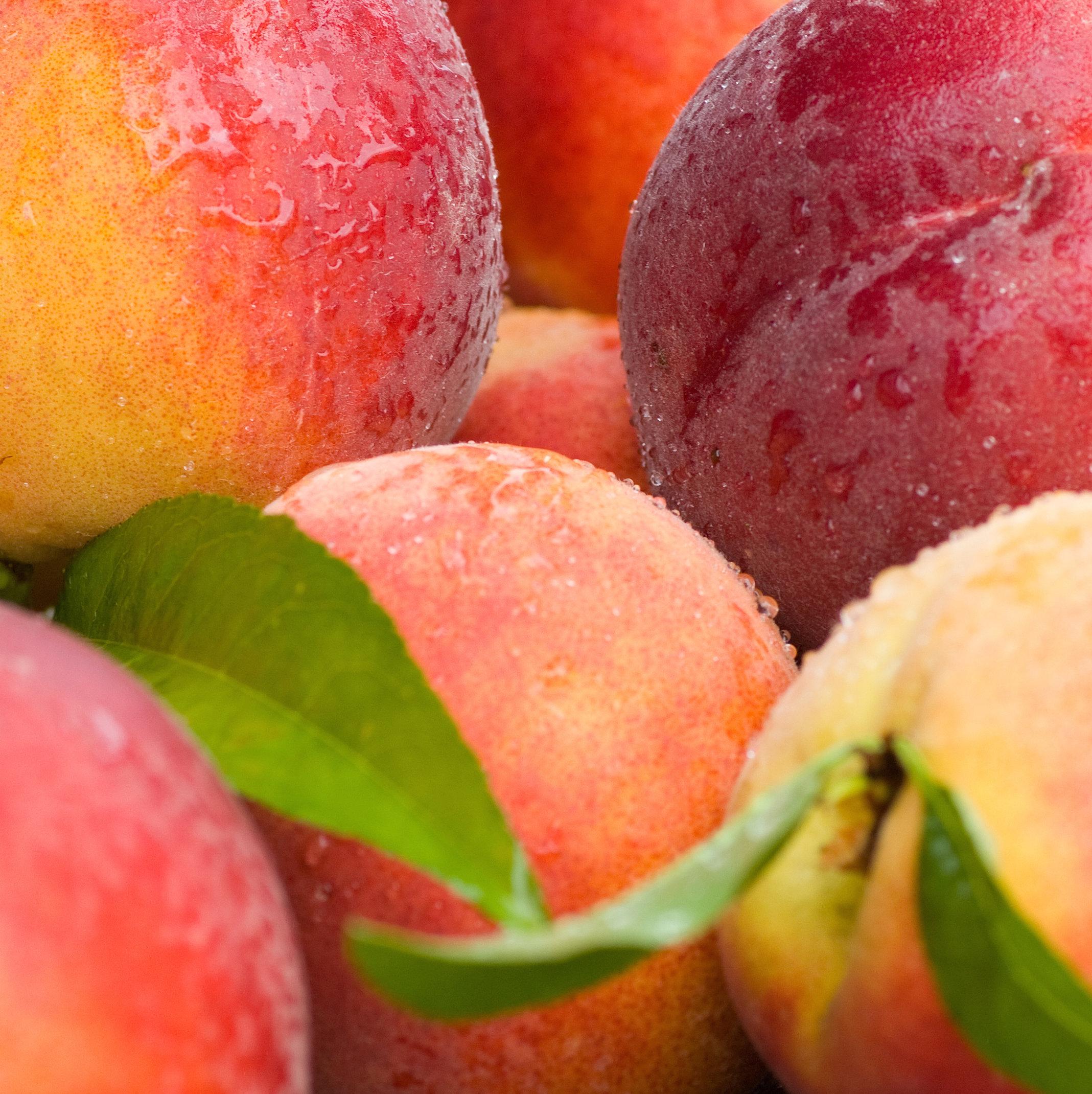 Соковитий персик фото 22 фотография