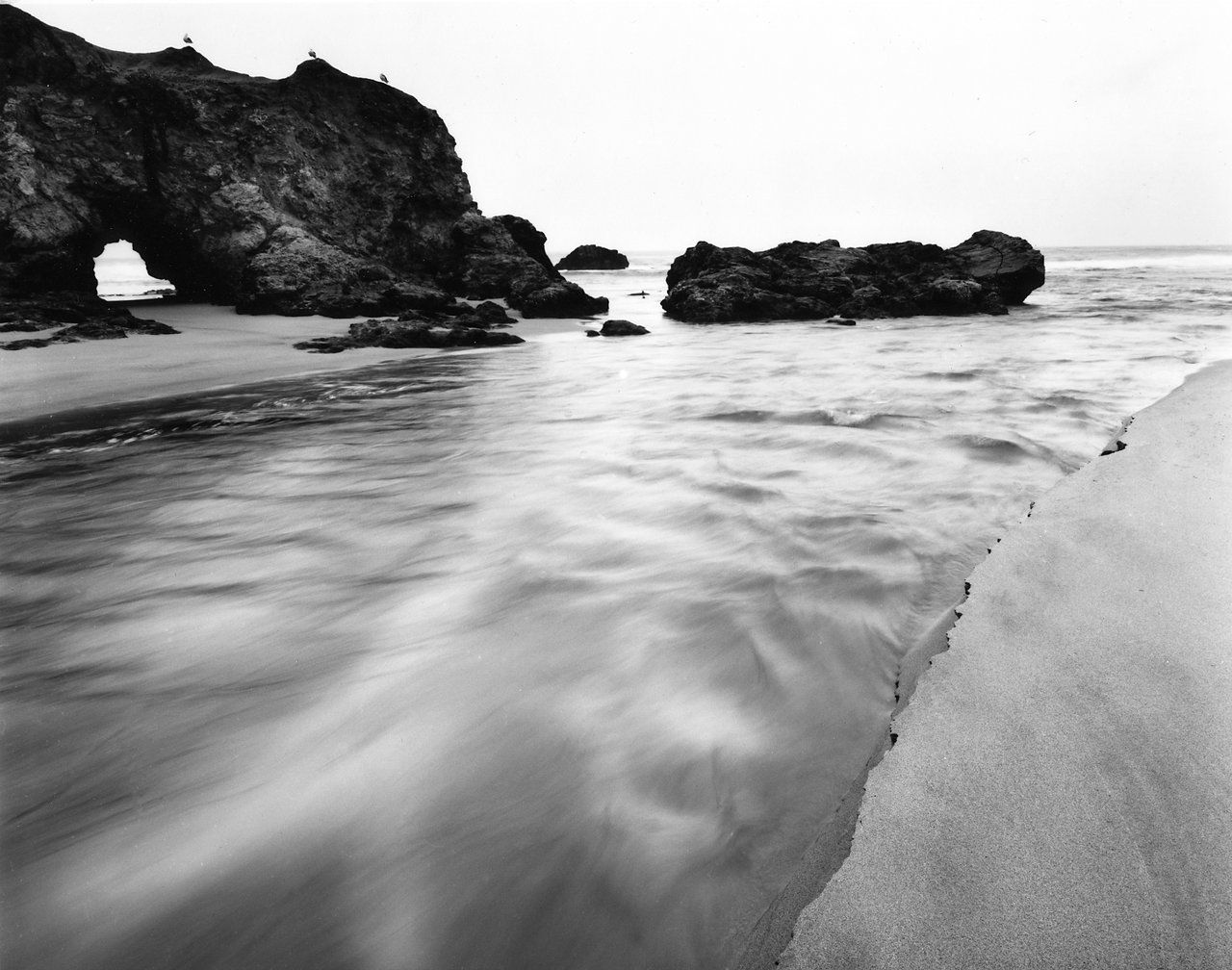 Pesacdero Estuary.jpg