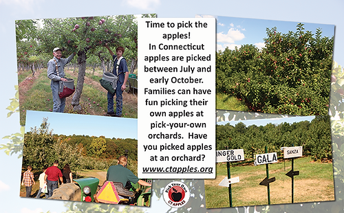 Apple Picking Coloring Pages : Structured play apple theme coloring pages