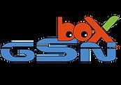 logo GSN BOX COLOR 2.png