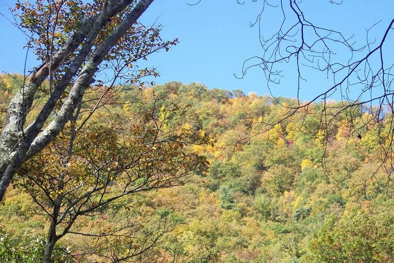 2011 fall view5.jpg