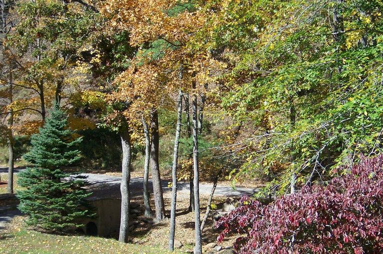 2011 fall views.jpg
