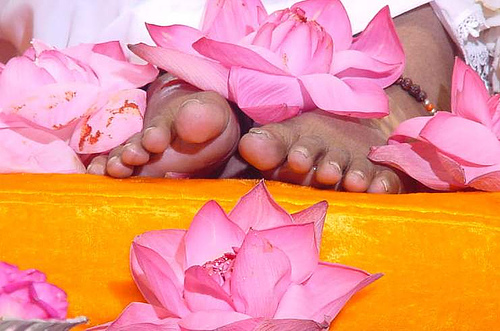 Image result for amritanandamayi holy feet