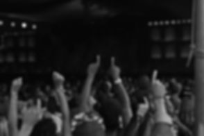 Concert Crowd
