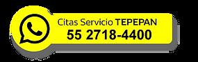 serv_tep.png