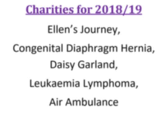 charities18-19.png