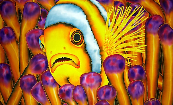 YELLOW CLOWNFISH - 2013