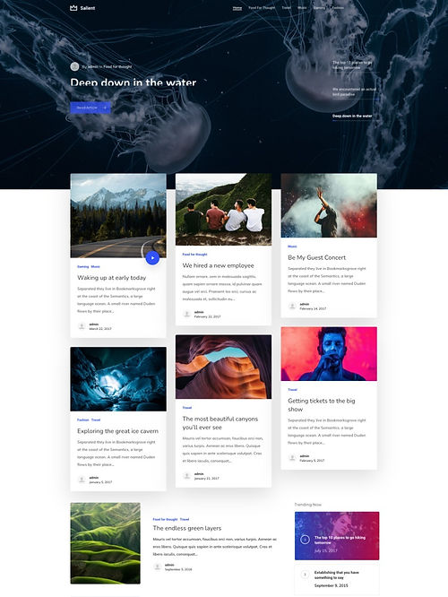 Blog Ultimate