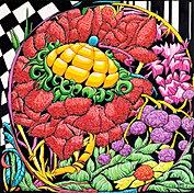 Végétal screen 4
