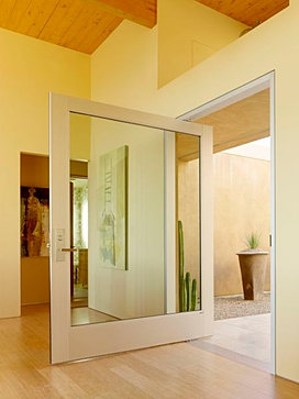door wide glass