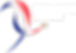 Logo_Premiere_Ligue copy.png