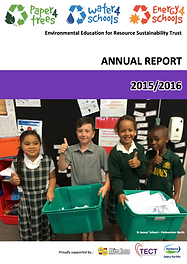 P4t Annual Report_2016 .png