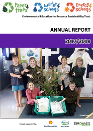 P4t Annual Report_2018.png