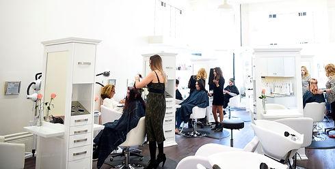 fox and the hair salon petaluma.jpg