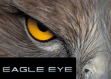 eagle eye cctv logo