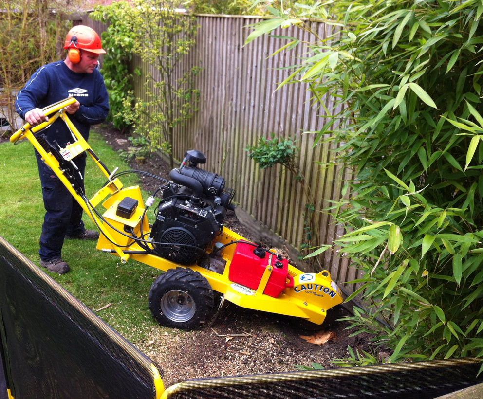 Garden maintenance garden maintenance in northwich garden for Garden maintenance