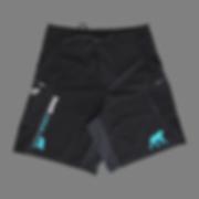 CrossFit Initium | Short | CrossFit | CrossFit Lille