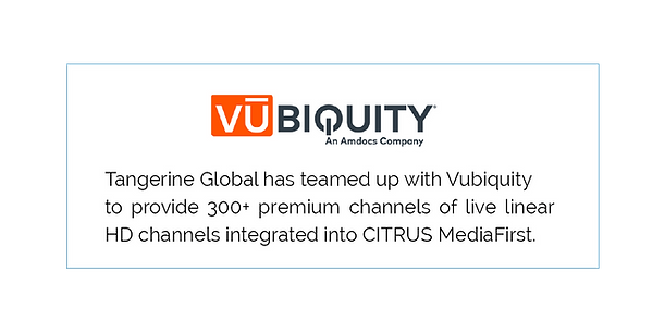 Vubiquity Graphic.png