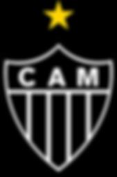 CAM.png