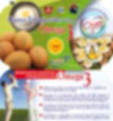 Envase Omega 3.jpg