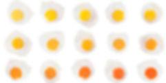 color-yemas.jpg
