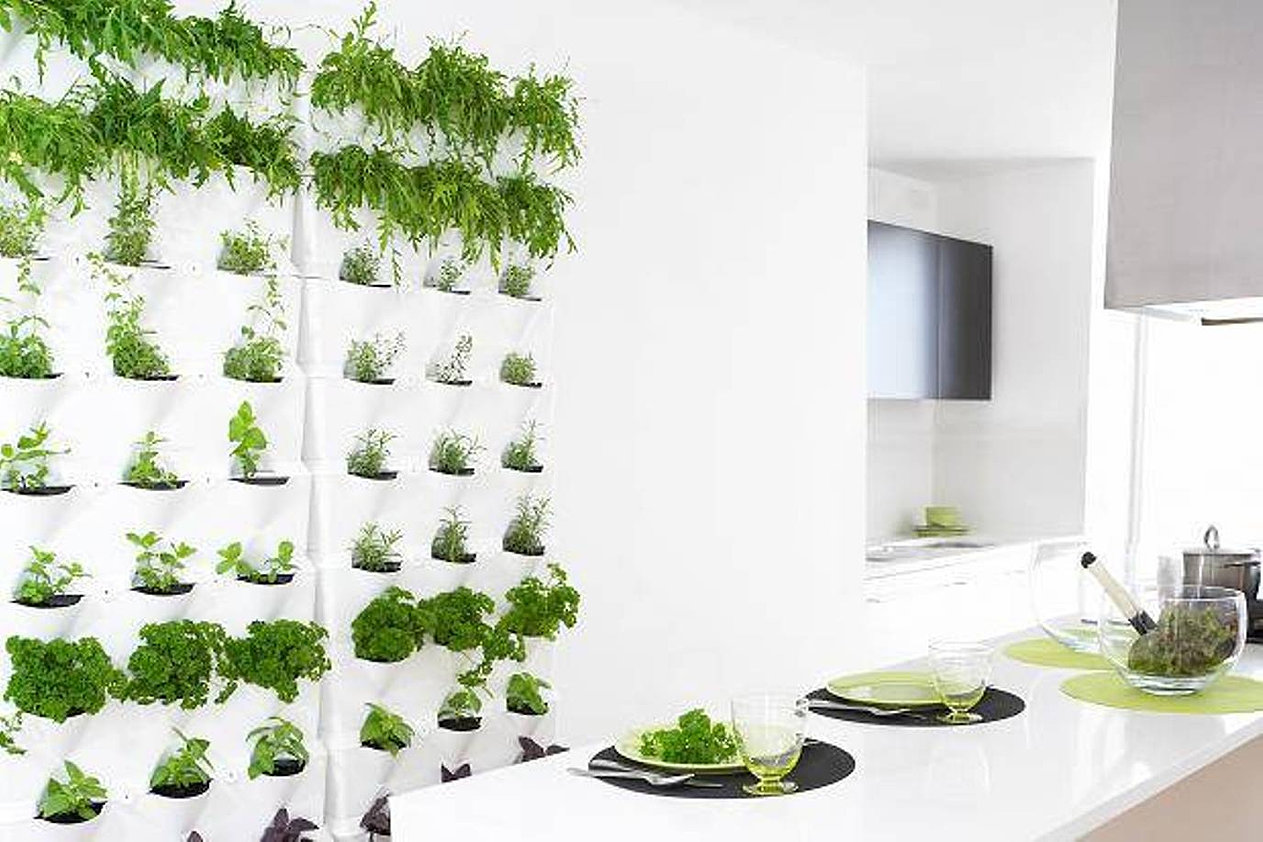 Indoor Kitchen Herb Garden Kit Collection Indoor Kitchen Herb Garden Pictures Garden And Kitchen