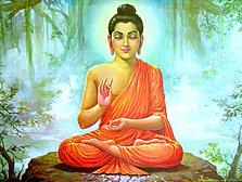 Buddha TM