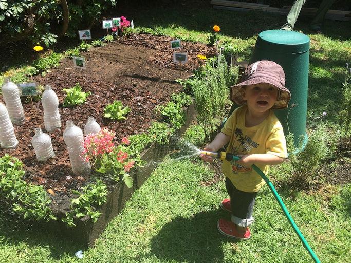 Pl ntula ni os con ra ces clases de permacultura y - Pequeno huerto en casa ...