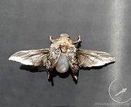 Lecący chrabąszcz – broszka
