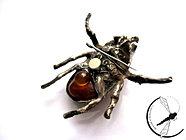 Srebrny Tropikalny chrząszcz
