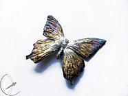 Ogromny tęczowy motyl