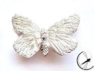 Bielinek - broszka