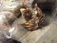 Srebrny lisć klonu - broszka