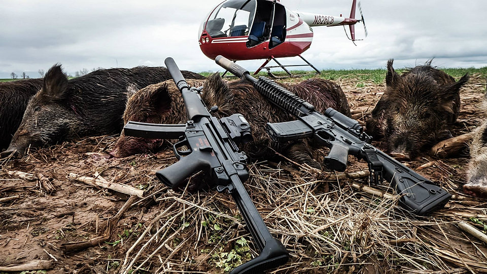 wild hog hunting from helicopter with  on I cant deal with any more idiots t shirt 235429907968809680 moreover Page4 in addition Picture Of The Day How To Shoot A  pound Bow further Hunting In Australia likewise 37704.