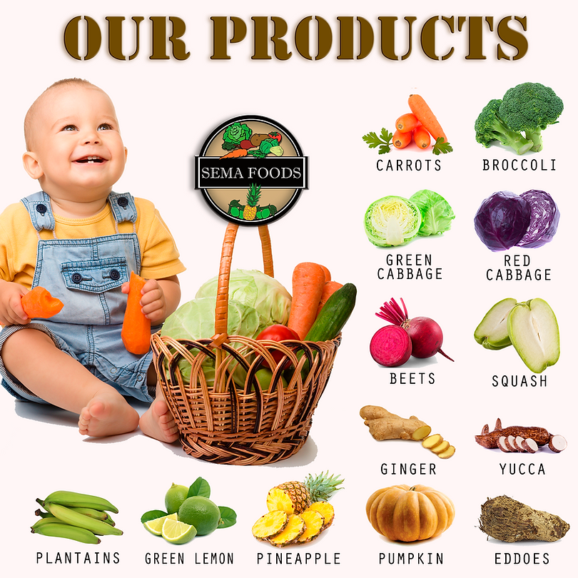 our products semfoods, our products semafoodscr