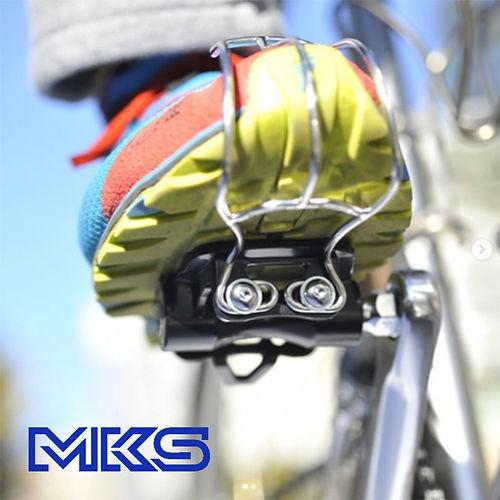 MKS IG cover.jpg