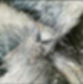 Bildschirmfoto 2018-02-23 um 00.30.11.pn