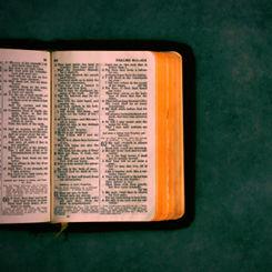 Bible Vibrant.jpg