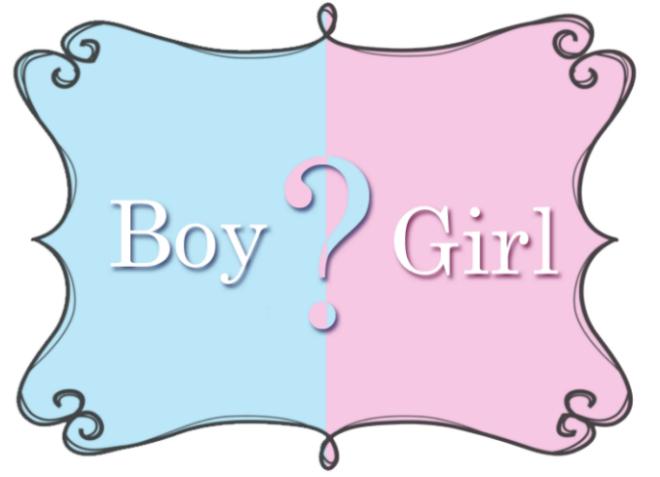 boy or girl sarah swanson blog