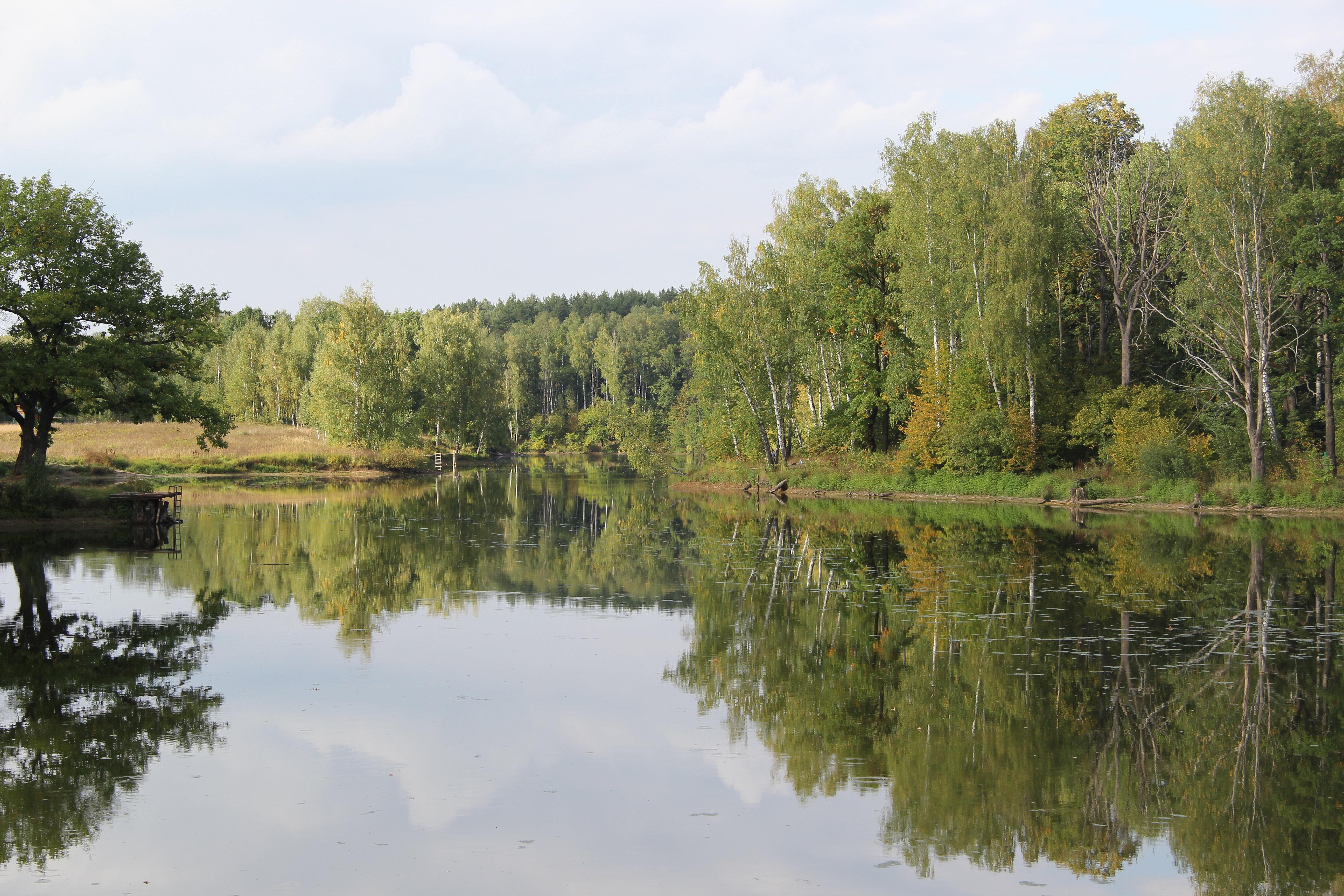 платная рыбалка в коломенском районе московской области