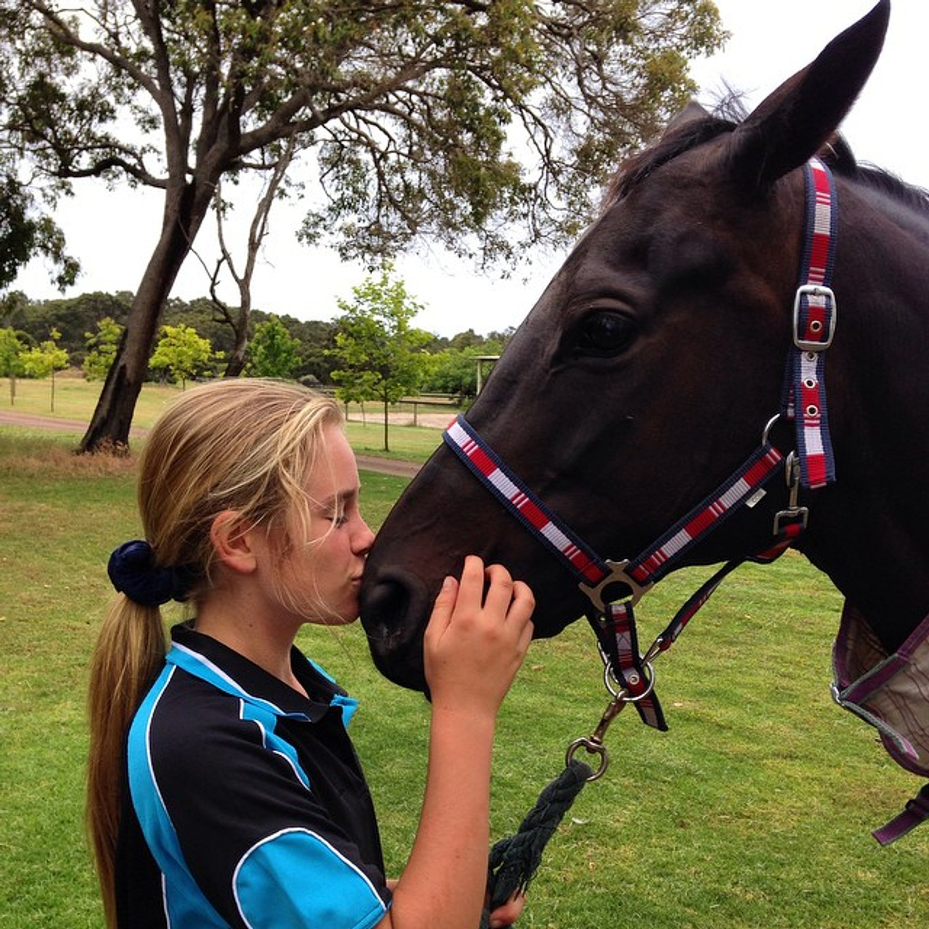 New love #super�� #horse #bonding