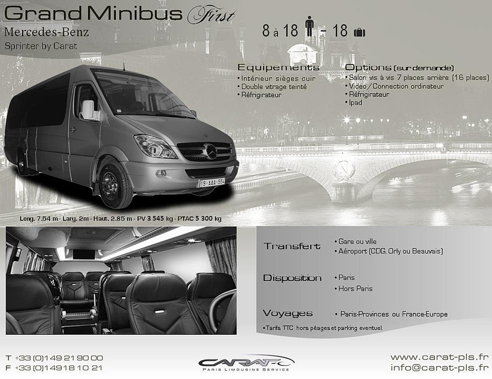 location minibus avec chauffeur. Black Bedroom Furniture Sets. Home Design Ideas