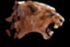 Les dessous de la conservation animale en Afrique